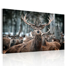 Modern HD Wall Art Forest Deers On Canvas Animal Prints Picture Poster Unframed