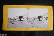 STB057 scène de plage tente famille vintage ancien photo STEREO amateur