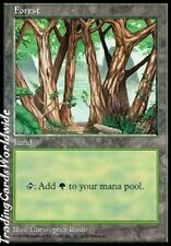 Forest Version 2 // NM // APAC Lands // engl. // Magic the Gathering