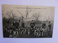 77 - CHASSE à Courre en Foret de Fontainebleau - La Meute