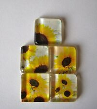 Oh So Very Cute and Fun Sunflower Fun Square Glass Magnets Set of 5