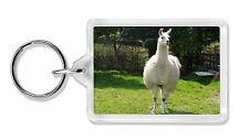 Llama Photo Keyring Animal Gift, AL-3K