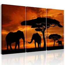 NO Frame Large Elephants Sunset Canvas Craft Wall Art Paintings Picture Poster