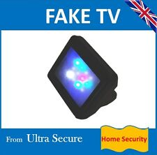 Fake TV or Computer Security Gadget