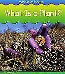 World of Plants Ser.: What Is a Plant? by Richard Spilsbury and Louise A....