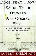 Dogs That Know When Their Owners Are Coming Home : And Other Unexplained...