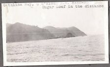 VINTAGE 1923 SUGAR LOAF CATALINA ISLAND AVALON LOS ANGELES CALIFORNIA OLD PHOTO