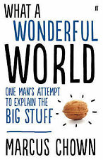 What a Wonderful World: One Man's Attempt to Explain the Big Stuff,Chown, Marcus