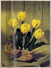 Tulip Floral Arrangement Pattern - Craft Book: #CCP1 Bloomin' Macrame