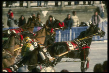 242060 Harness Racing On Canal Winterlude A4 Photo Print