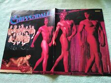 Chippendales - Poster - 90er Jahre - ca. 28 x 41 cm - Bravo Clippings