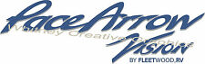 """"""" PACE ARROW VISION""""  RV  Graphic Lettering Decal 24"""" X 7.5"""" Made fresh"""