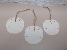 3 pc Sand Dollar Beach Ornament Set - Christmas Tree Coastal Sea Life Sanddollar