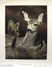 "Glenn OLSON ""Bright Eyed"" LTD art print Deer mint print Certificate COA Squirrel"
