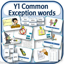 Y1 COMMON EXCEPTION WORDS & HFW SPaG primary teaching resources IWB display CD