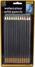 NEW A SET OF 12 PROFESSIONAL RESULT ART SKETCHING WATER COLOR ARTIST PENCILS