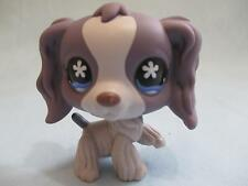 Littlest Pet Shop #672 Purple & Grey Cream Cocker Spaniel Dog 100% Authentic
