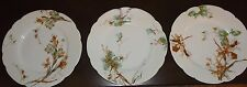 Haviland Limoges Scalloped Plates Branches Set 3