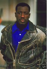 WESLEY SNIPES AUTOGRAPH SIGNED PP PHOTO POSTER