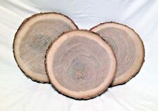 "10 Natural Oak Wood Log Slices 10"" to 12"" Crafts Rustic Wedding Cabin Décor Disk"