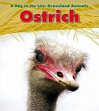 A Day in the Life Grassland Animals Ser.: Ostrich A Day in the Life Set:...