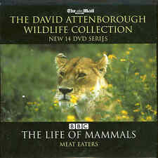 David Attenborough - THE LIFE OF MAMMALS - MEAT EATERS
