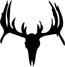 "Deer Buck Skull Antlers Hunting Sportsman Decal Sticker- 6"" Tall White Color"