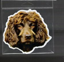 Boykin Spaniel 4 inch face magnet for anything metal