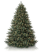 Balsam Hill Classic Blue Spruce Artificial Christmas Tree, 7.5 Feet, Clear light