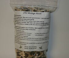 2.5 Oz (Apx 250) Moringa Seeds -  US Customs Cleared - Paisley Farm & Crafts