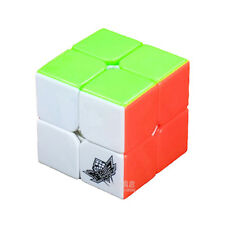 Colorful Cyclone Boys 2x2x2 Magic Cube Puzzle 2x2 Speed Stickerless Toy Gift