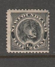 1894 NEWFOUNDLAND 1/2 c Dog Sg 59 MH