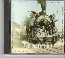 (FK59) A Full Head Of Steam, 10 tracks various artists - 1989 CD