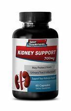 Urinary Tract Infections - Kidney Support 700mg - With Wild Blueberry Powder 1B