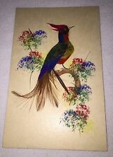 Vintage Postcard Handpainted Bird Real Feather Mexico Green Blue Blue Red Art