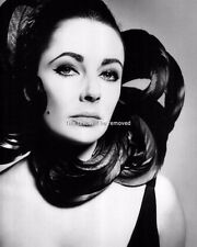 ELIZABETH TAYLOR Glossy 8X10 PHOTO PICTURE PRINT 1288