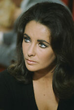 Elizabeth Taylor 3,100 Pictures Collection Vol 2 DVD (Photo/Images Disc)