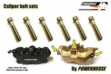 Suzuki GSXR 600 750 K8 K9 L0 Stainless joint bolt set front brake calipers