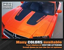 Dodge Charger Hood Accent Blackout Stripes 2011 2012 2013 Custom Decal Graphic