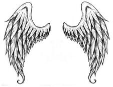 Angel Wings # 10 - 8 x 10 Tee Shirt Iron On Transfer (FOR BACK OF SHIRT)