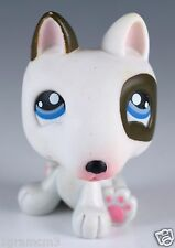Littlest Pet Shop Bull Terrier No # Brown and White With Blue Eyes Diary Pet