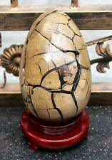 10.53lb AAA HUGE RARE Large Dragon Septarian Crystal Sphere Geode Egg Healing