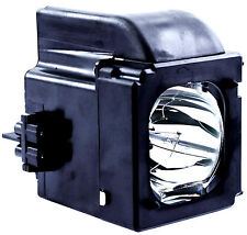 New Samsung BP96-01653a Replacement Lamp Bulb w/Housing DLP Rear Projection TV