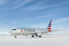 AMERICAN AIRLINES BOEING 737 AIRCRAFT POSTER PRINT 24x36 HI RES