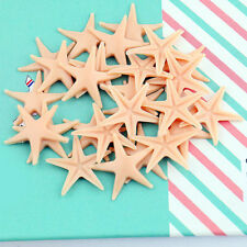 50pcs Starfish Sea Star Shell Beach Wedding Craft DIY Making Decor Miniatur DIY