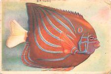 BR44127 Musee Oceanographique de Monaco poisson roi peche fish animaux animals