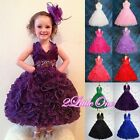 50% SALE Embossed Flower Girl Halter Dress Wedding Pageant Party Size 2-10 FG148