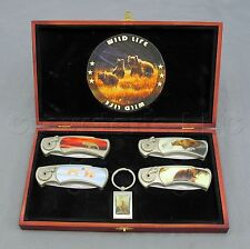 Wild Life Bears Grizzly Polar Bear Folding Pocket Knife Set with Display Box
