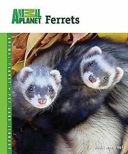 NEW Ferrets - McKimmey, Vickie exotic pets book 9780793837878 pocket pets