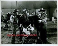 "Roy Rogers Trigger Jr. 8x10"" Photo From Original Negative #L6810"
